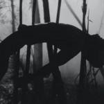 Festival de Sundance 2016: FUCKKKYOUUU – Eddie Alcazar – Flying Lotus