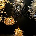 A l'avant garde: Leina Picto – Butterlight – 2015