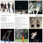 A la Briqueterie: Toute la danse européenne servie sur un plateau