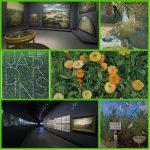 Exposition Jardins : les visages d'un éternel printemps