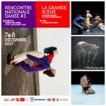 Rencontre Nationale Danse– Grande Scène 2017 : la danse contemporaine à l'honneur en Île-de-France