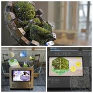 Exposition Les mousses, sentinelles de la pollution: le végétal au service de l'environnement?