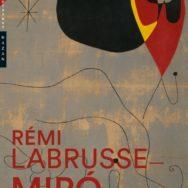 Miró – Un feu dans les ruines par Rémi Labrusse: une carrière de peintre