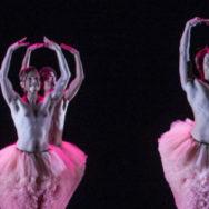 Maison de la danse de Lyon: TUTU mais pas trop …