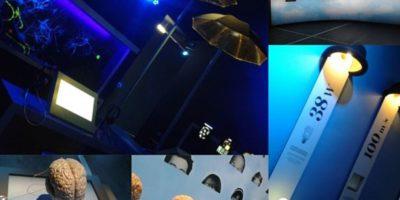 vues de l'exposition permanente Cerveau à la oté des sciences de la Villette
